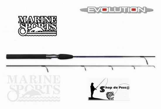 Marine Sports Evolution Mol MS-S 601 L 8-17 Lbs 1,83 Mt 1Tr